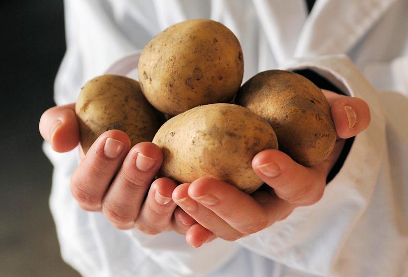 Hyvät ja maistuvat perunatuotteet